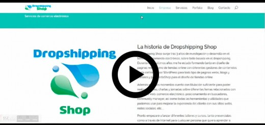 historia dropshipping shop